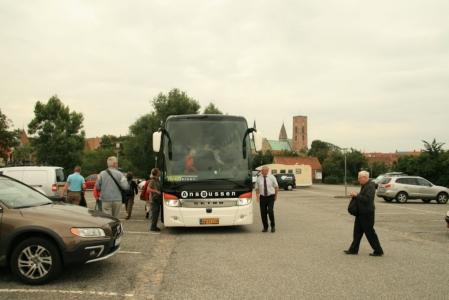 Bus Ribe
